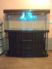 Продаєця акваріум 400літрів